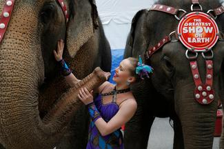 The last Ringling elephants