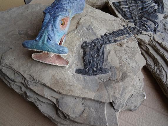 Nailed it: scientists describe weird ancient hammerhead reptile ?m=02&d=20160506&t=2&i=1136129409&w=&fh=&fw=&ll=644&pl=429&sq=&r=LYNXNPEC451BS
