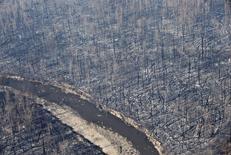 Лес после пожара в провинции Альберта, Канада 13 мая 2016 года. Масштабный лесной пожар, бушующий вокруг центра нефтеносных песков Канады, города Форт Мак-Марри, усилился и стремительно двинулся на север в понедельник вечером, заставив спасателей переключиться на защиту крупных нефтяных объектов к северу от города, сказали чиновники. REUTERS/Jason Franson/Pool