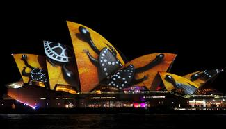 Sydney in lights