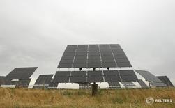 El Tribunal Supremo (TS) rechazó el miércoles tres recursos sobre los recortes a la remuneración de la producción de energía renovable aprobados por el Gobierno del Partido Popular para reducir los costes del endeudado sistema eléctrico español. Imagen de un panel fotovoltaico en un parque en Linyola, al noreste de España, el 18 de junio de 2013.  REUTERS/Albert Gea