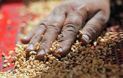 Un agricultor toca granos de trigo en Qaha, al noreste de El Cairo, el 5 de mayo de 2016. Los precios mundiales de los alimentos aumentaron por cuarto mes consecutivo en mayo, luego de un incremento en los valores de los principales productos alimenticios, excepto los aceites vegetales, dijo el jueves la agencia de alimentos de Naciones Unidas. REUTERS/Amr Abdallah Dalsh