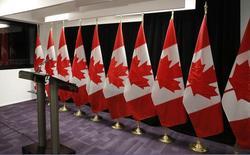 Канадские флаги. Палата представителей канадского парламента в среду проголосовала за изменение текста национального гимна страны, сделав его гендерно нейтральным, на фоне усилий нового либерального правительства, направленных на борьбу с сексизмом. REUTERS/Ruben Sprich