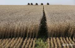 Комбайны собирают урожай на ферме близ Тальников, Красноярский край 27 августа 2015 года. Россия приступила в уборке зерновых в южных регионах, урожай существенно превышает прошлогодний, следует из сообщения Минсельхоза РФ. REUTERS/Ilya Naymushin