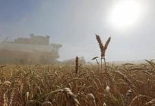 Зерноуборочный комбайн убирает урожай пшеницы в поле в хуторе Средний Ставропольского края. 7 июля 2016 года. Агентство СовЭкон, специализирующееся на анализе аграрных рынков, улучшило прогноз урожая зерновых в России в 2016 маркетинговом году до 108,8 миллиона тонн со 106,9 миллиона тонн. REUTERS/Eduard Korniyenko