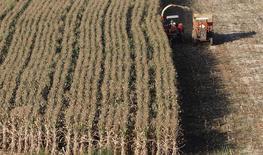 Una cosechadora de granos en Santo Antonio do Jardim, Brasil, feb 6, 2014. Brasil redujo el martes su estimación para la cosecha de invierno 2016 de maíz a 42,59 millones de toneladas, desde las 43,05 millones de toneladas pronosticadas en julio, debido a evidencias que indican que la sequía continúa pesando sobre las cifras finales de los cultivos del país sudamericano.   REUTERS/Paulo Whitaker