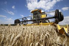 Французский фермер собирает пшеницу в Оннекуре. Консультационное агентство Strategie Grains резко сократило прогноз урожая и экспорта мягкой пшеницы для ЕС в этом сезоне из-за катастрофического падения урожайности во Франции. REUTERS/Pascal Rossignol