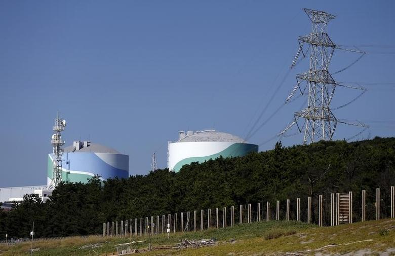 Kyushu Electric Power's Sendai nuclear power station is seen in Satsumasendai, Kagoshima prefecture, Japan, August 8, 2015. REUTERS/Issei Kato/Files