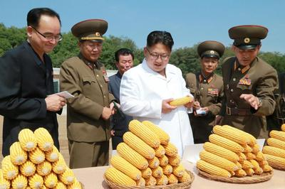 North Korea's supreme farm leader