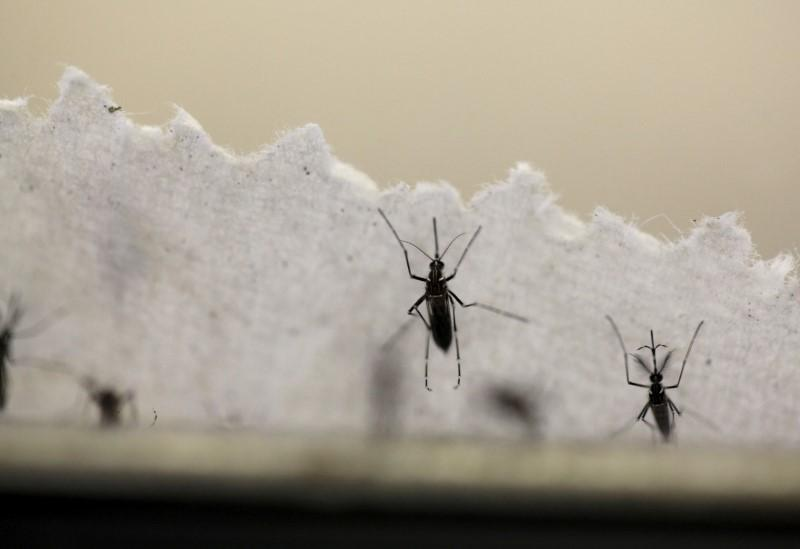 Florida expands Zika zone in Miami Beach after five new cases