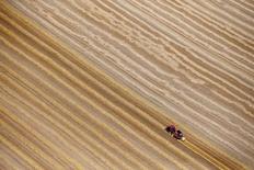 Un trigal en Coquelles, Francia, jul 21, 2015. La producción de trigo blando en la Unión Europea crecerá un 7 por ciento en el 2017 luego de que un clima adverso afectó las cosechas este año, mientras que la siega de cebada y maíz aumentarán levemente, dijo el jueves la consultoría Strategie Grains.    REUTERS/Pascal Rossignol/File Photo