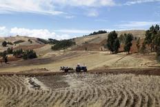 Imagen de archivo de un tractor pasando junto a un cultivo en Pampacangallo, Perú, sep 17, 2014. Las agroexportaciones de Perú crecerían un 7 por ciento este año por mayores envíos a China, Estados Unidos y Canadá luego de superar barreras fitosanitarias en esos grandes mercados, dijo el miércoles a Reuters el ministro de Agricultura y Riego, José Hernández.     REUTERS/Enrique Castro-Mendivil