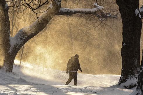 Snowstorm stalls New York