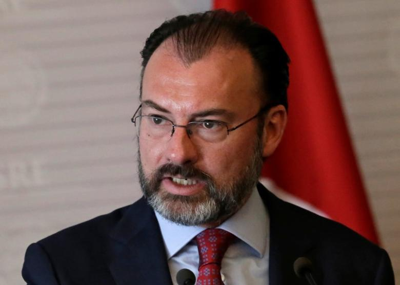 Mexico's Foreign Minister Luis Videgaray gives a speech to the media next to Turkish Foreign Minister Mevlut Cavusoglu (not pictured), at the foreign ministry building (SRE) in Mexico City, Mexico February 3, 2017.REUTERS/Henry Romero