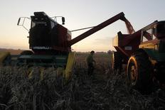 IMAGEN DE ARCHIVO. Una cosechadora en un maizal en Valdés, Argentina. mayo 26, 2012. La cosecha de maíz y soja de Estados Unidos en 2017 estaría por debajo de los niveles récord alcanzados en 2016, pero los suministros de ambas materias primas seguirán siendo abundantes, dijo el viernes el Departamento de Agricultura del país norteamericano.  REUTERS/Enrique Marcarian