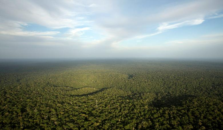 File Photo: A view is seen from the Amazon Tall Tower Observatory (ATTO) in Sao Sebastiao do Uatuma in the middle of the Amazon forest in Amazonas State, Brazil, January 10, 2015. REUTERS/Bruno Kelly/File Photo