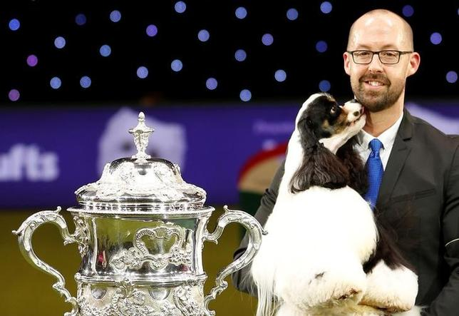 3月12日、英国のバーミンガムで開催された「クラフツ・ドッグショー」で、アメリカン・コッカー・スパニエルの「マイアミ」が優勝を飾った。クラフツは、126年の歴史を持つ世界最大規模のドッグショー(2017年 ロイター/Darren Staples)