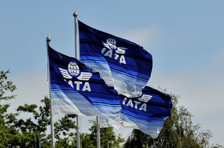 FILE PHOTO: Flags are seen at the 2016 International Air Transport Association (IATA) Annual General Meeting (AGM) and World Air Transport Summit in Dublin, Ireland June 1, 2016. REUTERS/Clodagh Kilcoyne