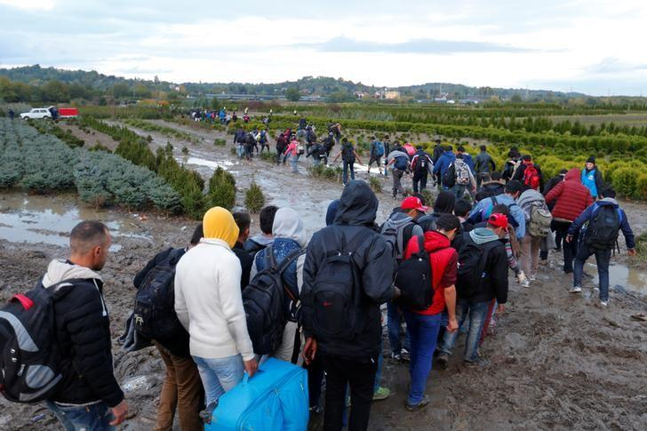 Migrants make their way after crossing the border at Zakany, Hungary October 16, 2015. REUTERS/Laszlo Balogh/Files