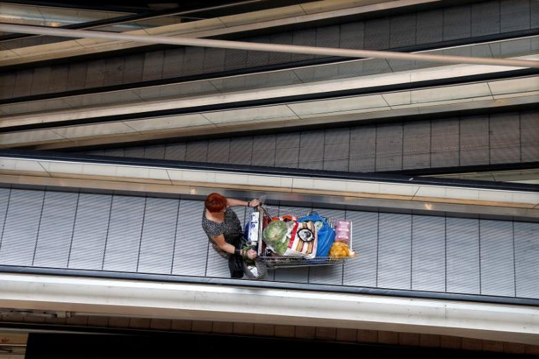 A customer pushes a shopping trolley on an escalator at the Bercy shopping centre in Charenton Le Pont, near Paris, August 29, 2013.   REUTERS/Charles Platiau/File Photo