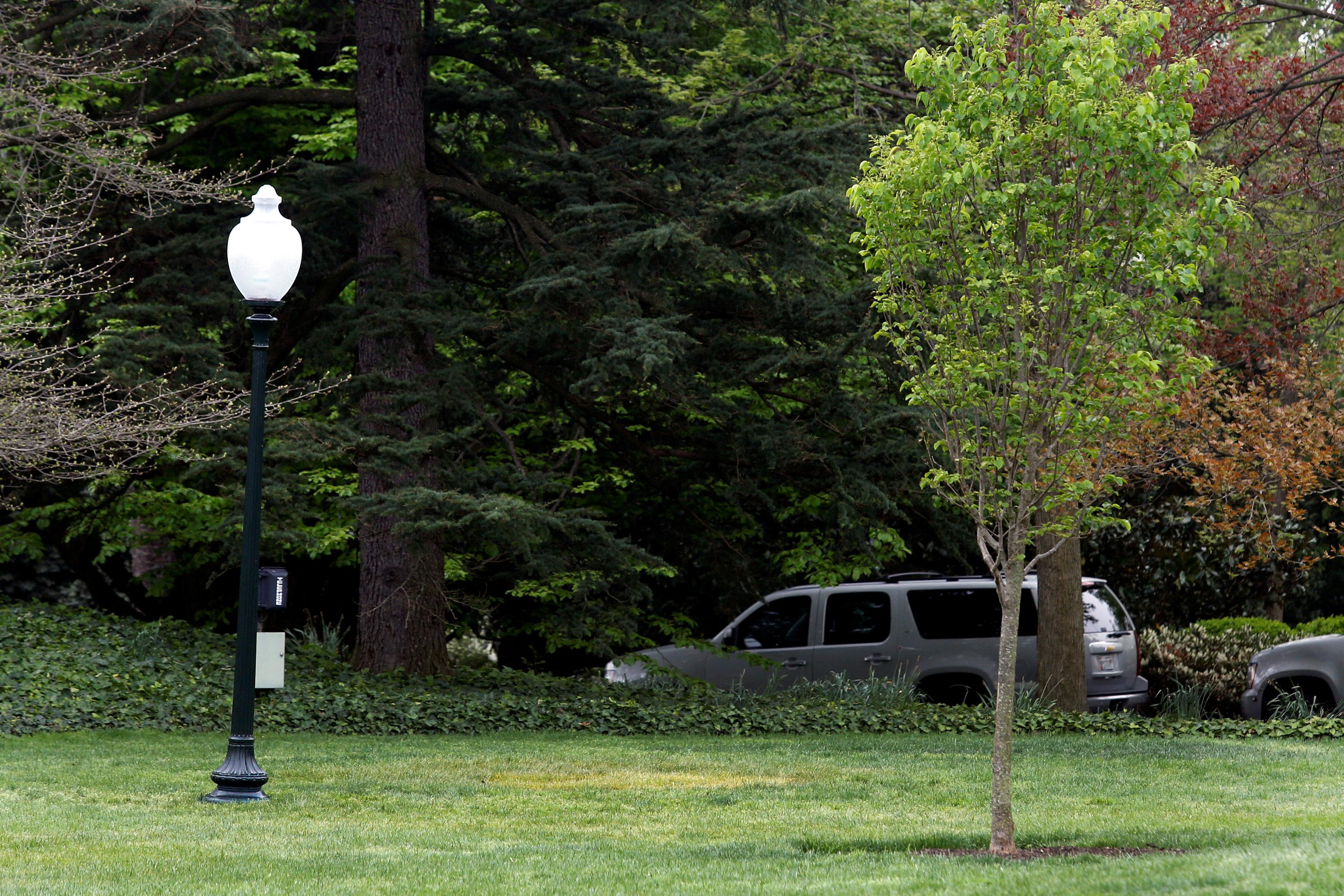 A yellow spot is seen where the tree planted by French President Emmanuel Macron and U.S. President Donald Trump on April 23 stood on the South Lawn of the White House in Washington, U.S., April 28, 2018. Yuri Gripas