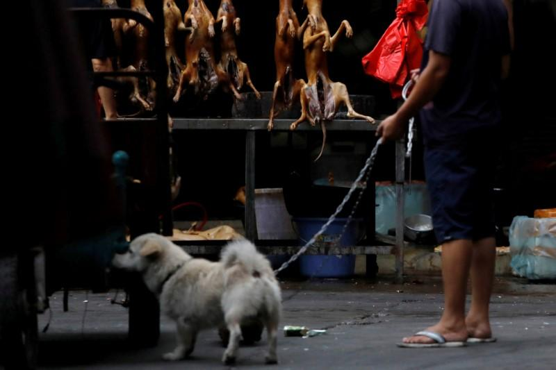 A man walks with his pet dog as he talks to a vendor who sells dog meat at a market during the local dog meat festival in Yulin, Guangxi Autonomous Region, China June 21, 2018. Tyrone Siu     TPX IMAGES OF THE DAY