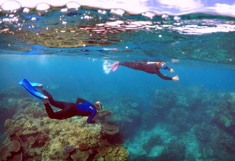 Tourists snorkel in an area called the 'Coral Gardens' at Lady Elliot Island, located north-east from the town of Bundaberg in Queensland, Australia, June 11, 2015. David Gray