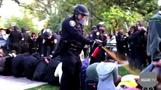 UC Davis chancellor sorry for pepper spray incident