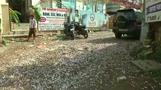 Roads in India littered with firecracker waste after Diwali celebrations