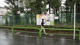 Typhoon drenches Japan on general election day