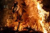 スペインの伝統行事「ルミナリアス」、炎の中を馬が駆け抜ける(17日)