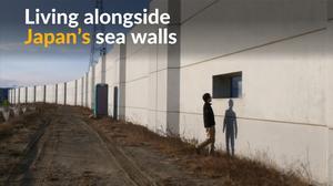 Seven years after tsunami, Japanese live alongside high walls