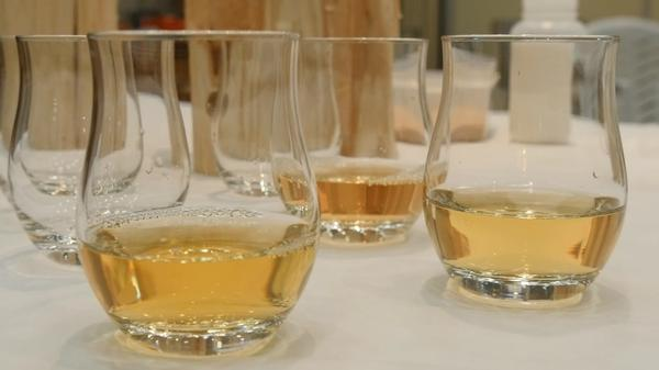Japanese scientists make booze from trees