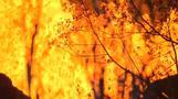 Vulkan Kilauea weiterhin bedrohlich