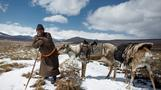 Mongolia's reindeer herders face an identity crisis