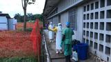 エボラ患者3人が隔離病棟から脱走、うち2人が翌日死亡(字幕・25日)