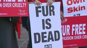 LA moves to ban fur products
