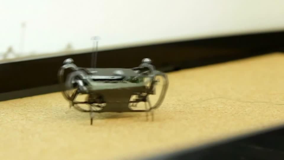 Robotic cockroach can walk on land and swim underwater