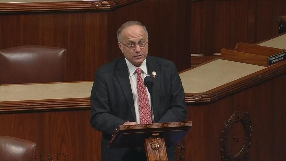 Rep. King says 'not a white nationalist' after racist remarks
