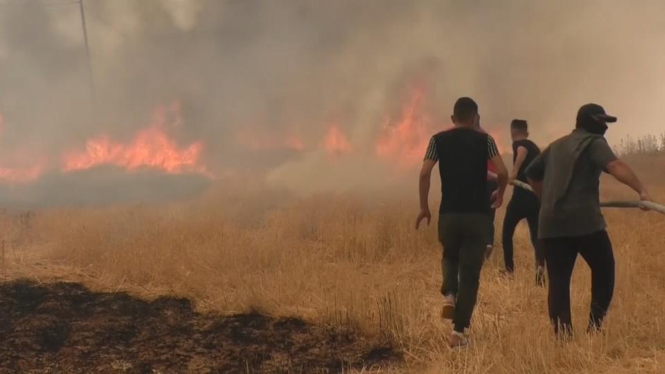 Iraq's bumper crop is burning