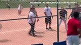 Parents slug it out at Colorado youth baseball game