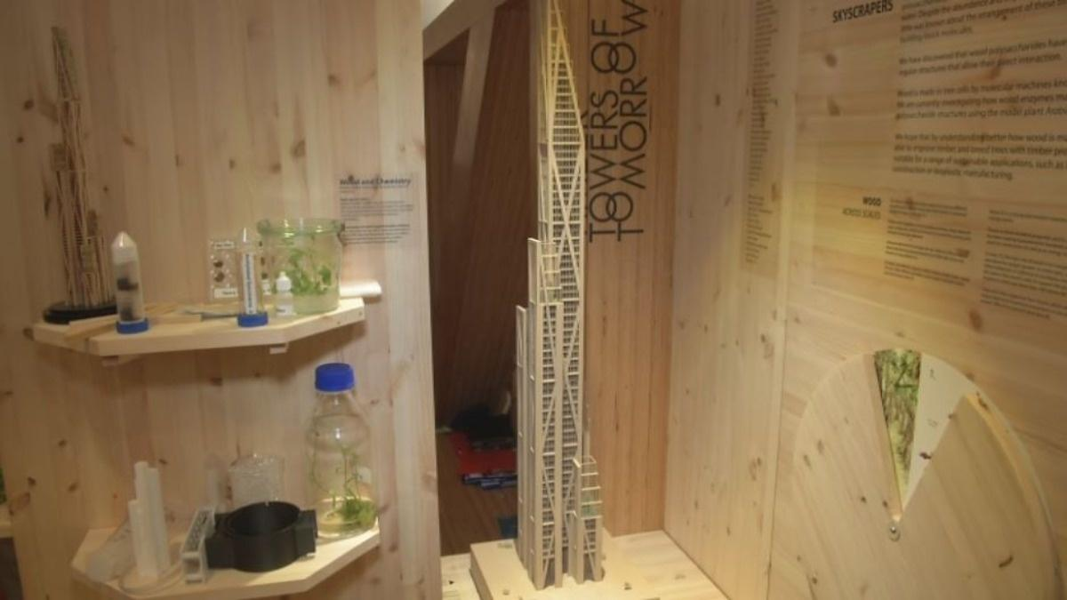 Wooden skyscrapers could reshape our cities | Reuters com