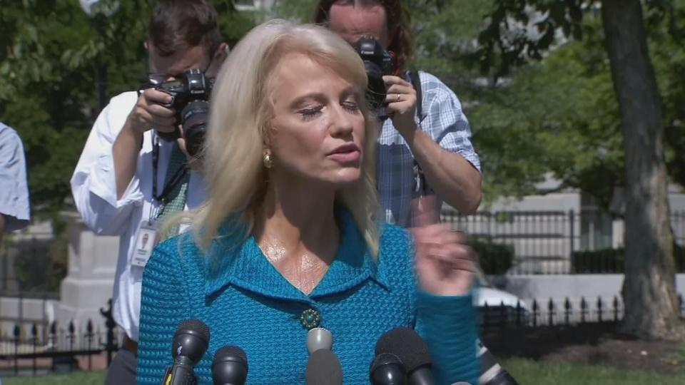 'What's your ethnicity?': Kellyanne Conway to reporter