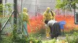 コンゴ東部ゴマで初のエボラ症例、WHOは緊急会議へ(字幕・16日)