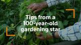 Hungary's favorite gardener still digging up new tips as he turns 100