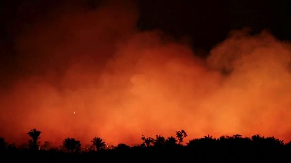 アマゾンの火災延焼続く、「死のスパイラル」への懸念高まる(字幕・22日)
