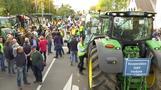 Landwirte protestieren in Bonn
