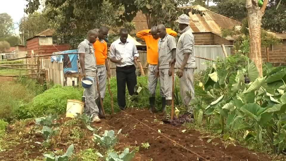 Equipped with new skills from jail, Kenyan ex-convicts turn to...