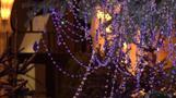 チボリ公園のクリスマスツリー、3000個のスワロフスキーでキラキラ(字幕・19日)
