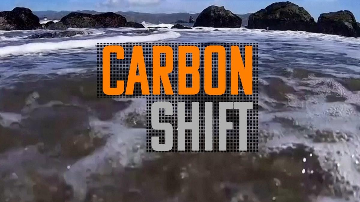 Carbon Shift: Cash boost for innovative carbon removal